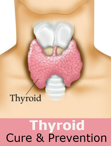 Thyroid cure