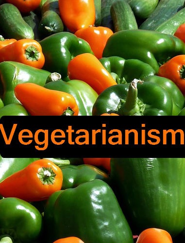the pros of being a vegetarian Believe it or not, there are tons of advantages of becoming a vegetarian despite this, just 5 percent of americans consider themselves vegetarians.