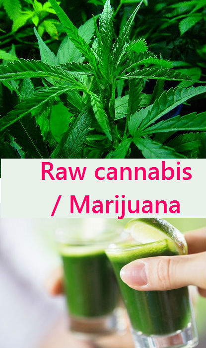 raw_marijuana_juicing