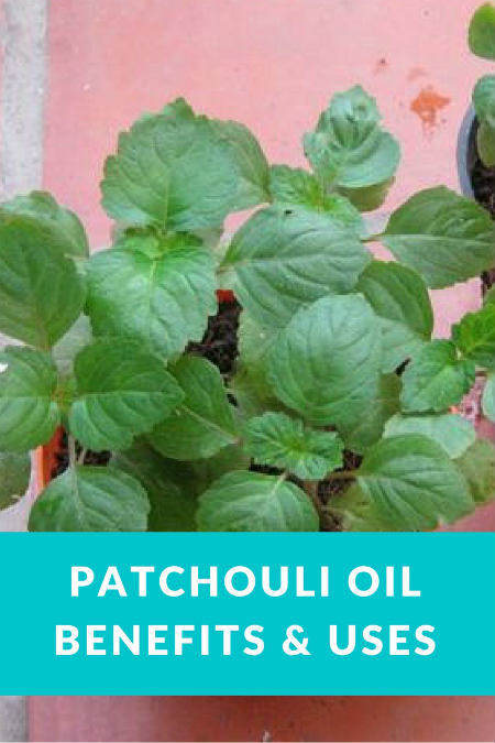 patchouli_oil_uses