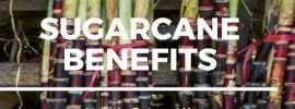 Simple Benefits and Uses of Sugarcane